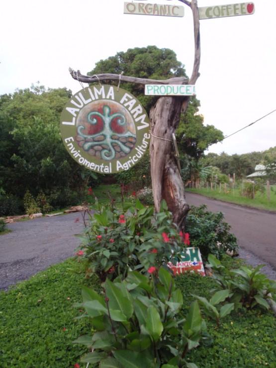 Laulima Farm