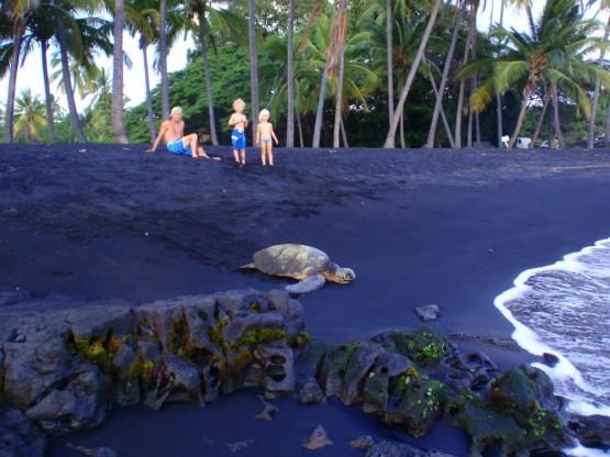 Black Sand Paradise