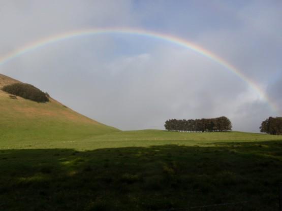 9_rainbowhawihills