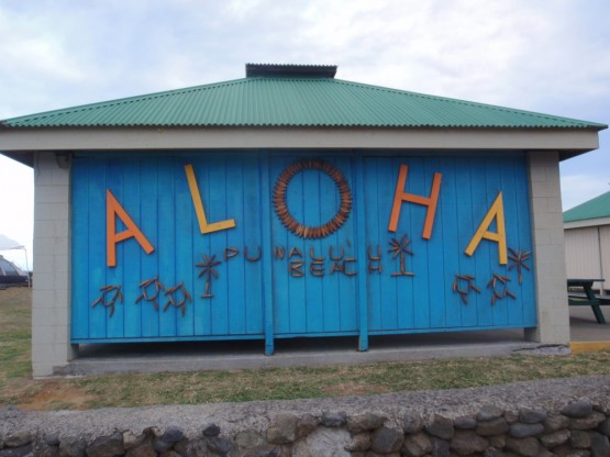 10_aloha