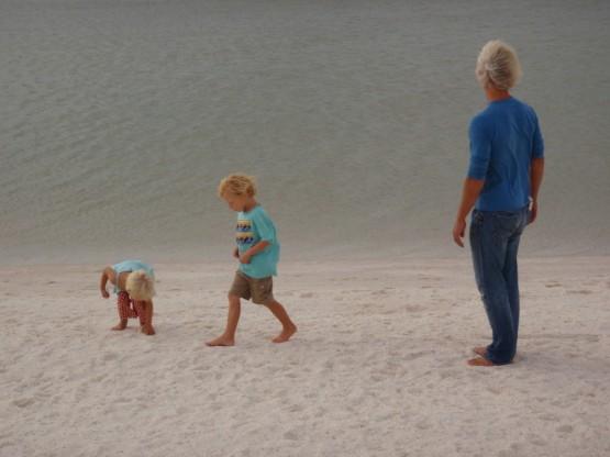 Shell's beach