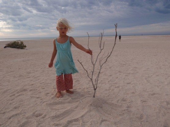 "Sienna with her nature's art project ""lonely tree with shells"""
