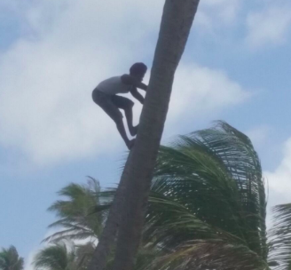Coconut Man getting his exercise